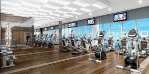 prive_gym_rendering